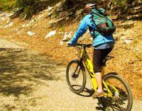Comment emprunter la vélo-route du Rhin ?
